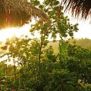 Laos zur Regenzeit