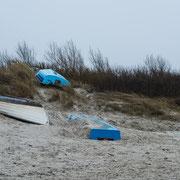 Strandgut bei Wustrow