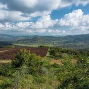 fruchtbare Landschaft um Motovun