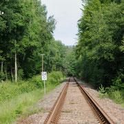 stillgelegte Bahnlinie mit großem Espensaum