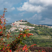 Motovun - wie in der Toskana