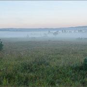 Frühnebel über dem Kalkmagerrsen, im Hintergrund der Thüringer Wald