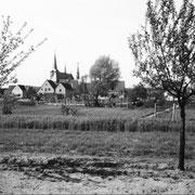 Sicht vom Hägfeld zur Kirche, 1955