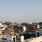 Agra von oben