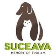4 Tiere im Tierheim Suceava/Rumänien über Suceava - Memory of Tina eV