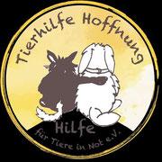 7 Tiere in Rumänien über Tierhilfe Hoffnung eV