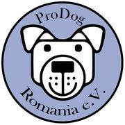 4 Hunde in Rumänien über Pro Dog Romania eV