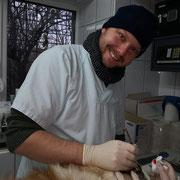1 Tier in Rumänien über Suceava - Memony of Tina eV