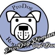 1 Tier in Rumänien über Pro Dog Romania eV