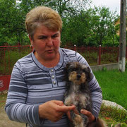 Hündin einer Familie in Tantava, Rumänien
