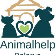 4 Hunde in Belarus (Weißrussland) über Animalhelp Belarus eV