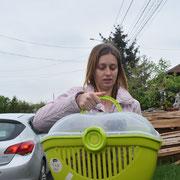 1 Tier in Tantava/Rumänien über Carmens Tierasyl