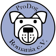 2 Tiere in Rumänien über Pro Dog Romania eV