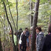Gut gelaunt im herbstlichen Wald
