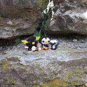 Felsenpinguin nach Jennifer Hillebrand, kleiner Pinguin nach Anni310 (Perlentiere.com/forum), Pinguin nach Nicole Nitsche, Pinguinbaby nach Christiane Brüning