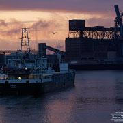 Getreidehafen - September 2008