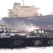 Holz- und Fabrikenhafen November 2008 - TRUST PIONEER Länge: 171m; Breite: 27m