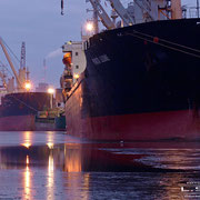 Holz- und Fabrikenhafen Januar 2009 - PORTO LEONE Länge: 142m; Breite: 22m