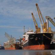 Holz- und Fabrikenhafen Oktober 2010 - nichts mehr los im Hafen ; )