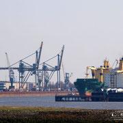 Neustädter Hafen - April 2010 - Blick von der Kap Horn Straße