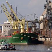 Holz- und Fabrikenhafen März 2010 - UNIVERSAL ANTWERP Länge: 160m; Breite: 24m