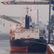 Neustädter Hafen - Februar 2010 - ETERNAL FORTUNE Länge:169m; Breite: 27m