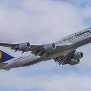 """Lufthansa Fanhansa Siegerflieger Boeing 747-8 """"Potsdam"""""""