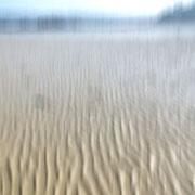 Grande marée