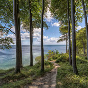Wanderweg im Nationalpark Jasmund