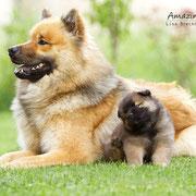 Azou & Beejay