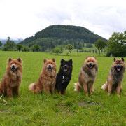 Bijou, Amadea, Amicelli, Azou + Beejay