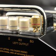 4Ω、8Ωに対応。バナナプラグ、及びYラグ端子が接続可。