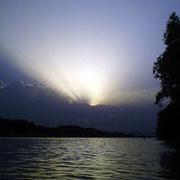 Abendlicht - Auf der Donauinsel 2007
