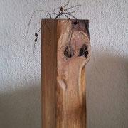 Eichenstele in rustikaler Auswahl geölt und gewachst-sehr ausgeprägte Struktur