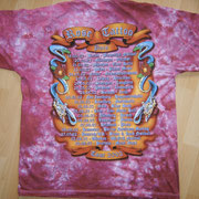 European Pain Tourshirt '02 Back Batik