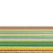 Bollenstreek,  2014, Lambdaprint/Diasec hinter Acryl,  Ed. 5 75 x 220 cm + 54x180cm