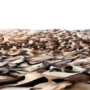Dunes, Colorado, USA 2017 Lambdaprint/Diasec hinter Acryl Ed. 5  75 x 180 cm