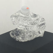 waterbottle_big 2018 plastic + water Unikat 16 x 12 cm