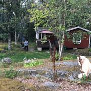 Sommerurlaub in Saltarö