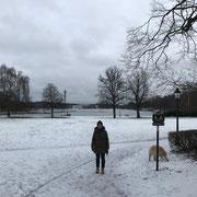 Djurgarden im Winter