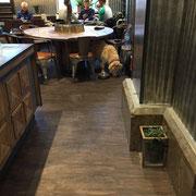 Espressohouse - immer hundefreundlich!