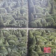 'Bush crossroads 1',400 x400mm Oil on canvas.