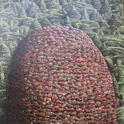 'Red Hill',400 x400mm Oil on canvas.