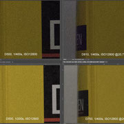 ISO Vergleich Nikon D500 vs. D750 vs. D810 ISO12800 20,7MP