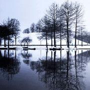 Spiegelung am Westparksee