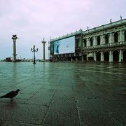 Die Taube von San Marco