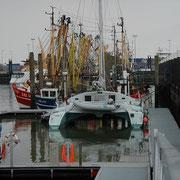 Norddeich Störtebeker Marina