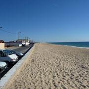 Der Strand von Culatra