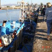 Fischereihafen Portimao
