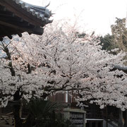 賀集・大日寺